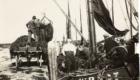 Wier laden in  de haven van Den Oever